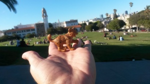 Buster at Delores Park